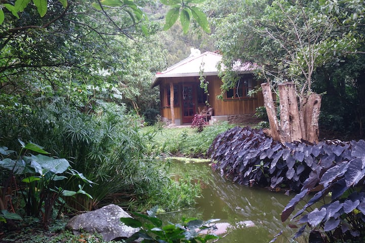 Super cute casa on organic farm with fast internet