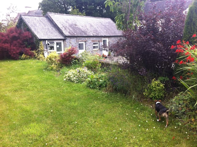 """Sonas"" Stone Cottage Kilkenny - Cuffesgrange - Rumah"