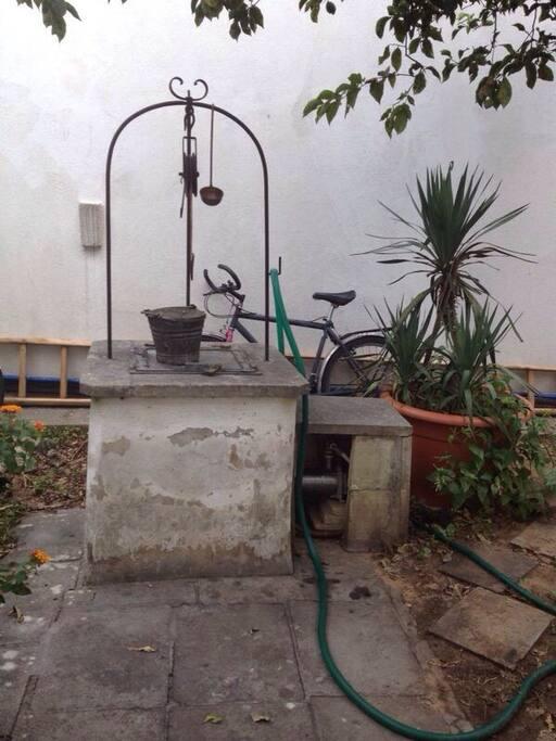 pozzo in giardino