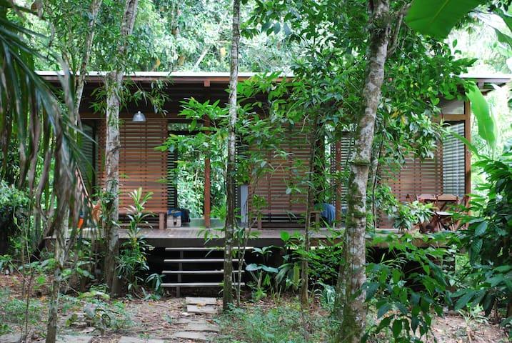 Juquehy -  House in the rainforest - São Sebastião - House
