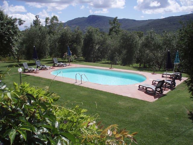 Terra Santa appartamento Fagiano - Santa Fiora - Byt
