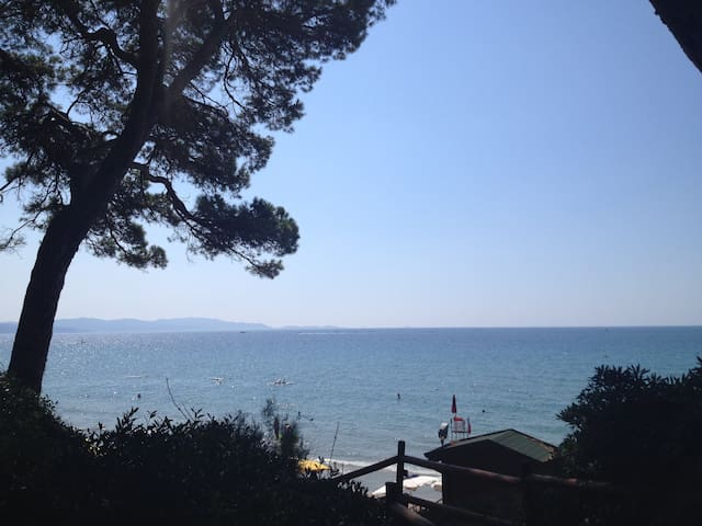 Sea and pine forest - Follonica - Appartement