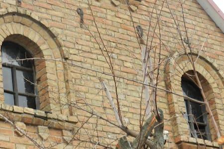 Original German Mennonite Home - Zaporiz'kyi district
