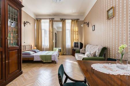 Petersburg style apartment, visa - 圣彼德堡 - 公寓