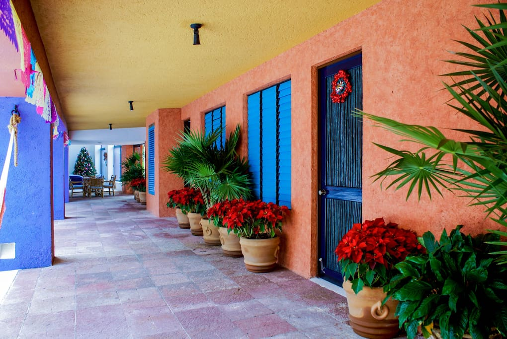The beautiful Mexican colors of the brick walls...