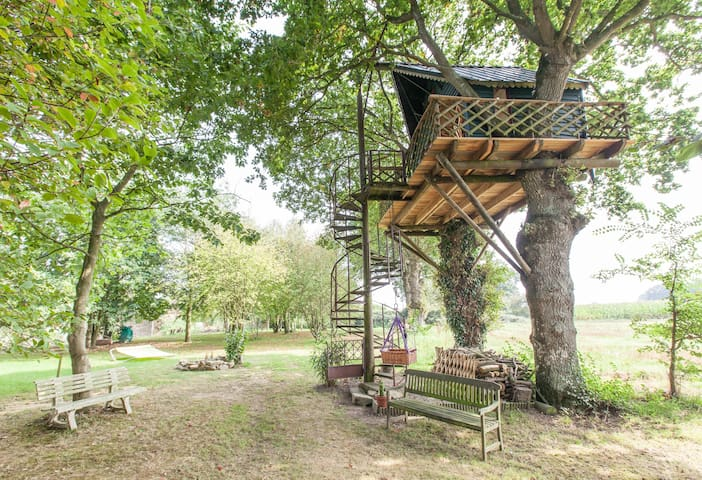 ROMANTIC TREE HOUSE WITH THE BIRDS up 7 meters - Yvignac-la-Tour - Houten huisje