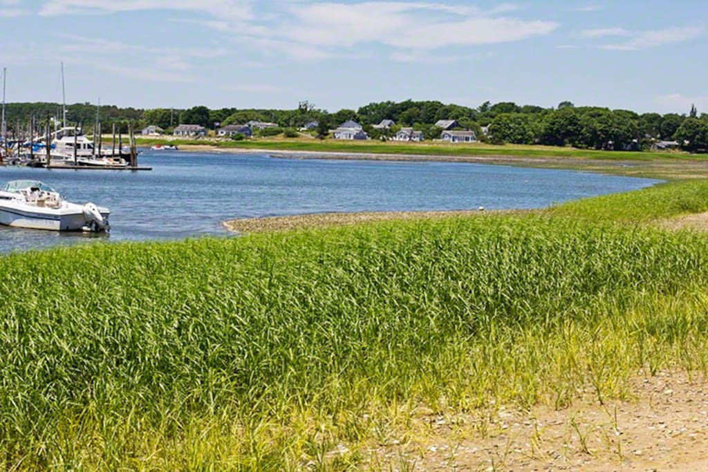 Another view of Wellfleet Harbor at the end of our tiny dead end street. A walk to the right takes you to Wellfleet center by way of Uncle Tim's bridge.