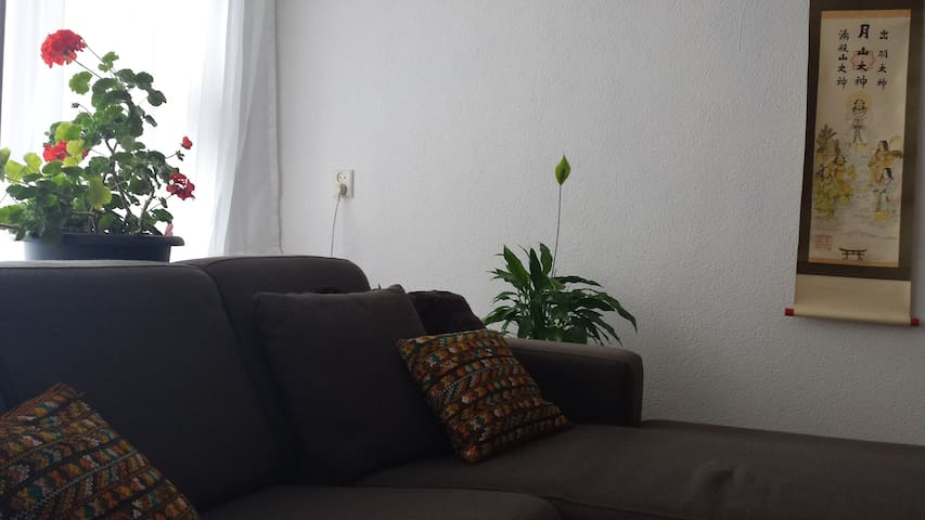 Charming, comfortable apartment  - Tilburg - Apartment