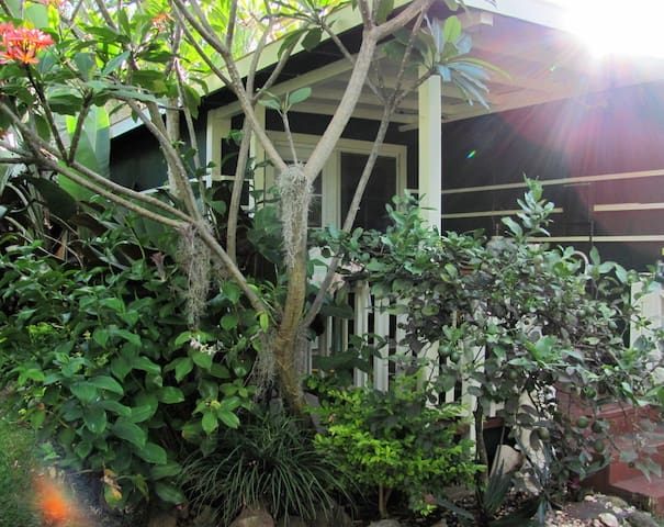 Quiet Garden Cottage - Haleiwa - Cabane