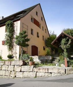Ferienwohnung Hopfenscheune - Reichenschwand - Huoneisto