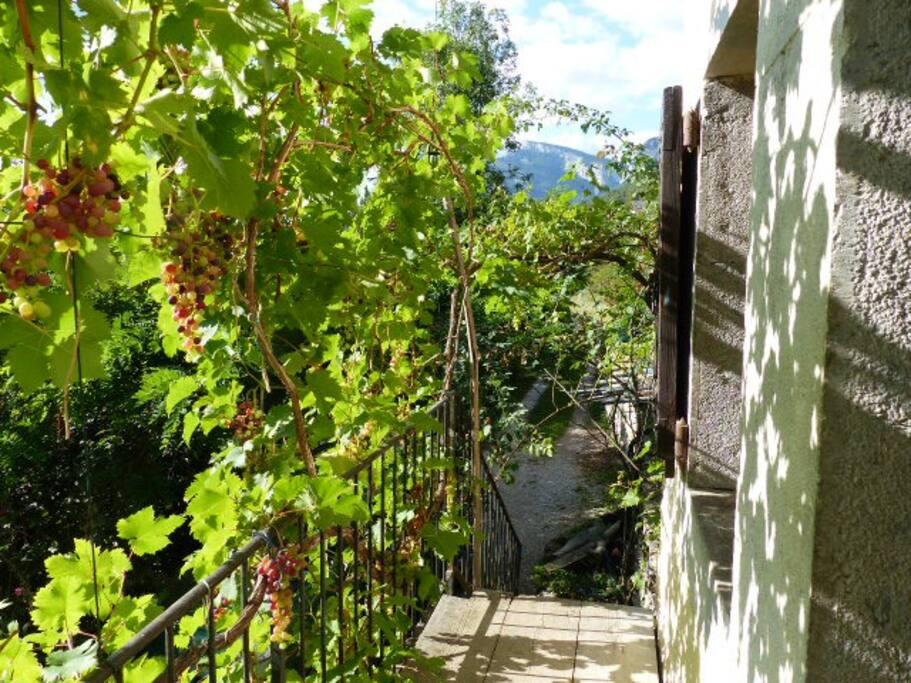 balcon, entrée indépendante.
