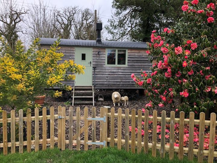 Shepherds' hut close to the sea and New Forest