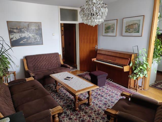Big Apartment In Skopje Center