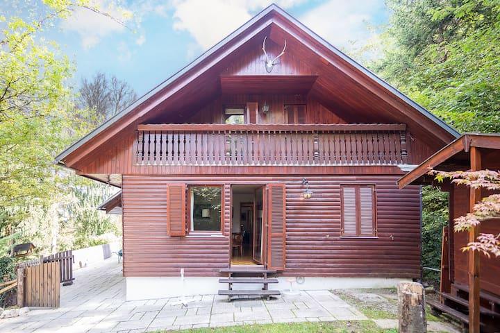 Bled, Unique location, center - Bled - House