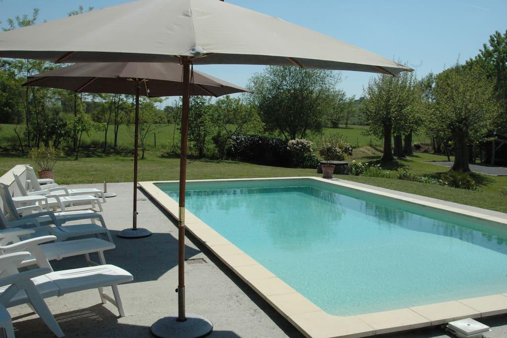 Plages de la piscine aménagées avec chaises longues et parasols
