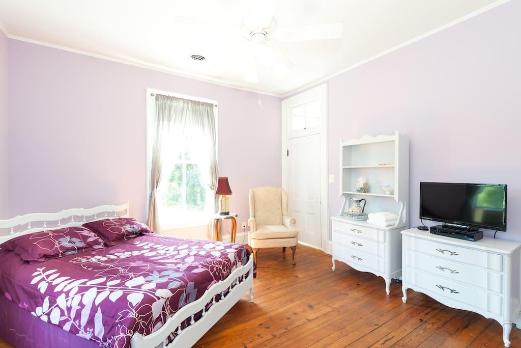 High ceilings, wood floors, door size windows