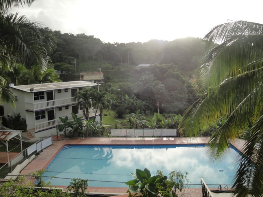 El Yunque Rain Forest, Luquillo etc