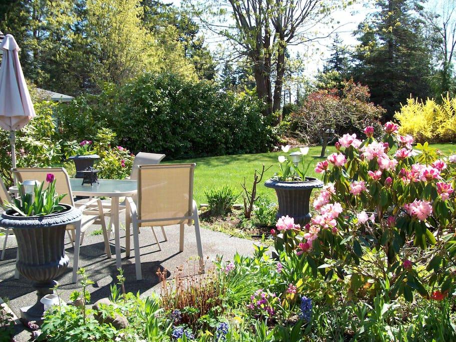 Spring garden terrace