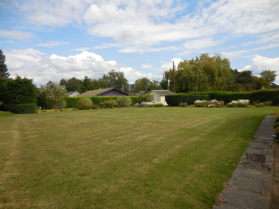 Spacious private backyard