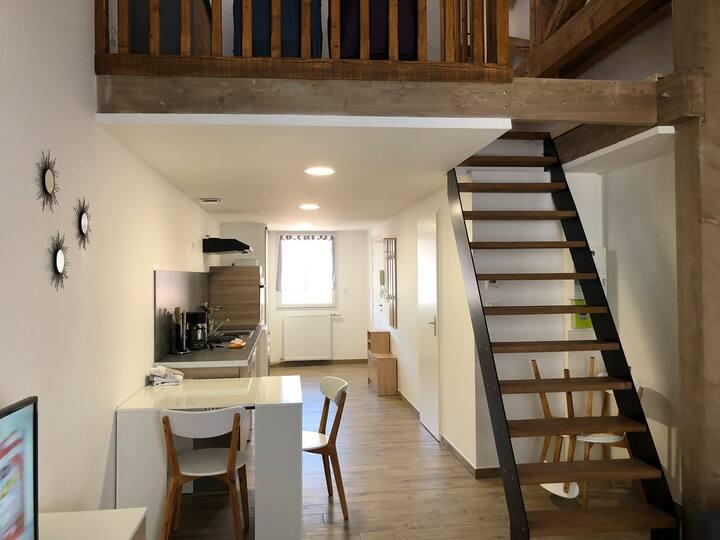 Centre ville Gérardmer, Appartement neuf 2-4 pers