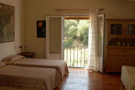 Apartamento-estudio