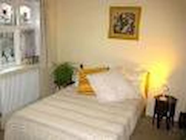 London Lovely Room Private Guests' Shower & Toilet - Greater London - House