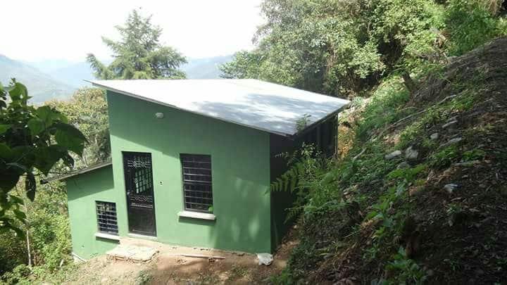 Lodge Blue Pine Farm cabin 3 green
