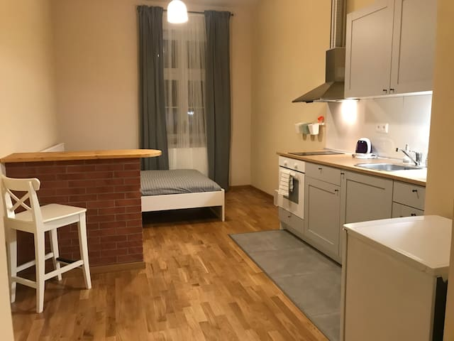 Sweet Apartment in the centre of Prague