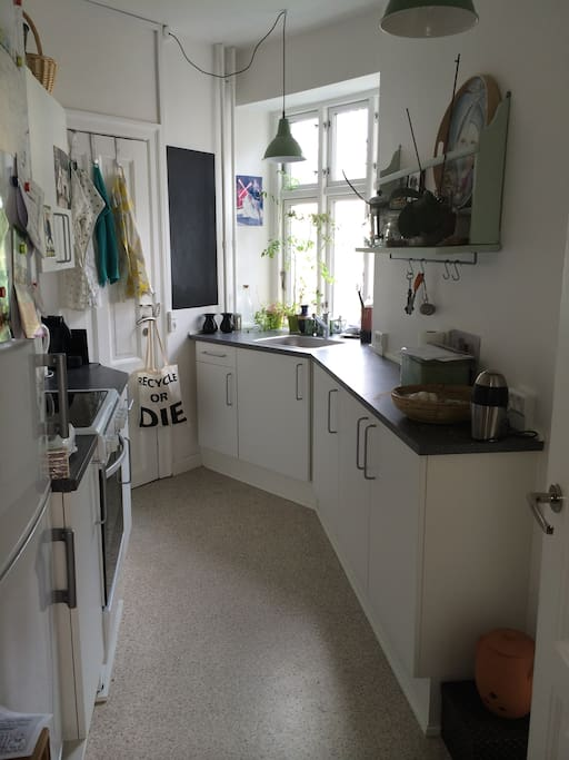 The kitchen with everything you need - stove, oven, fridge, toaster, water heater and so on.
