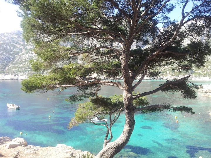 Studio proche calanques Luminy