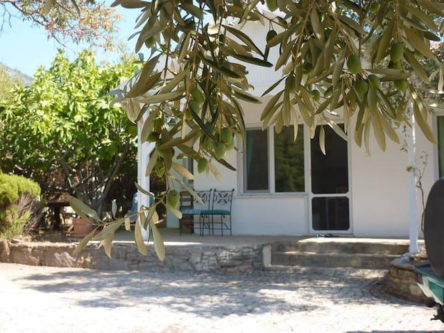 Guesthouse under the figtrees - Aydın - Mökki