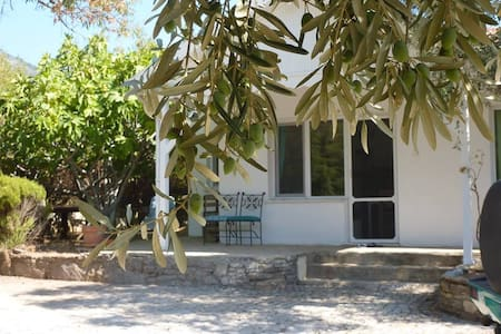 Guesthouse under the figtrees - Aydın