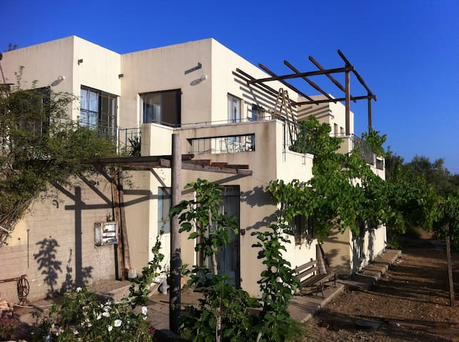אחוזת אומנדולינה בית אירוח - Mattat - Villa