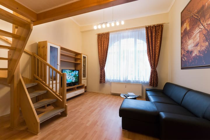 APARTMENT KARLA CAPKA STREET - STANDARD APARTMENT - 卡羅維發利(Karlovy Vary) - 獨棟
