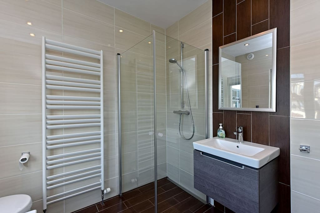 Bathroom (Shower & Bathtub)