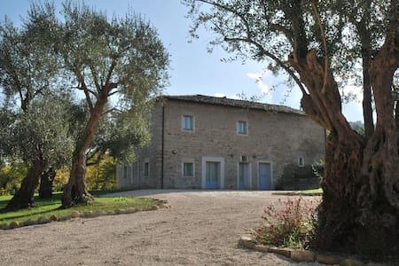 Monnece 11, villa nelle Marche - Cingoli - Ξυλόσπιτο