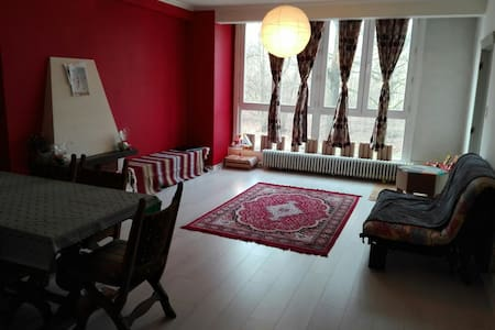 1 bed room near city center - Gante - Apartamento