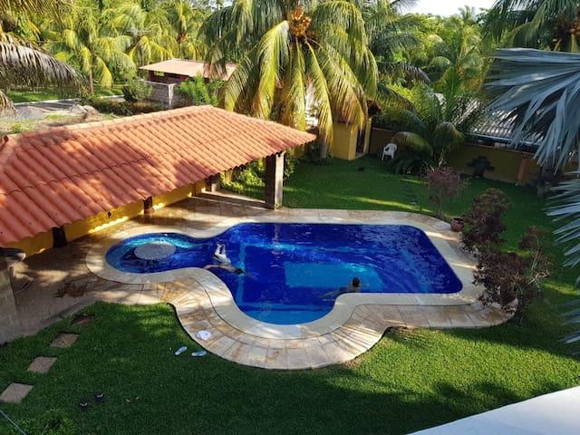 The Palm Tree House