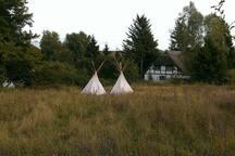 ... umgeben von Feldern + Wiesen