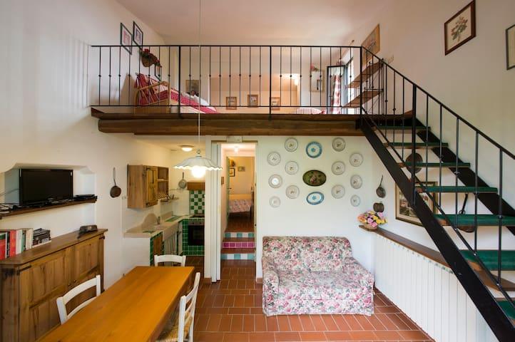 Agriturismo San Giorgio - Monteroni - Apartment