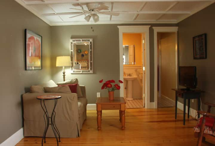 ★Lakeview Apartment - Perfect for Traveling Nurse★