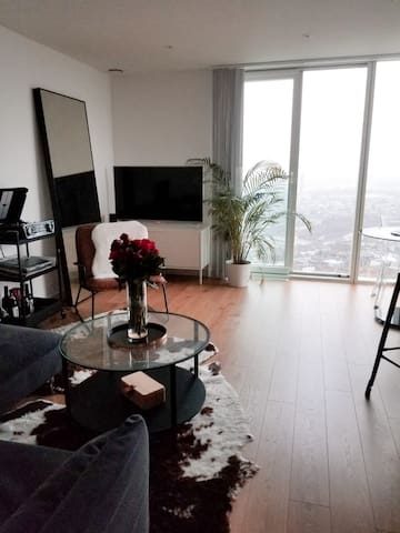 Serviced flat with stunning view in modern buildin