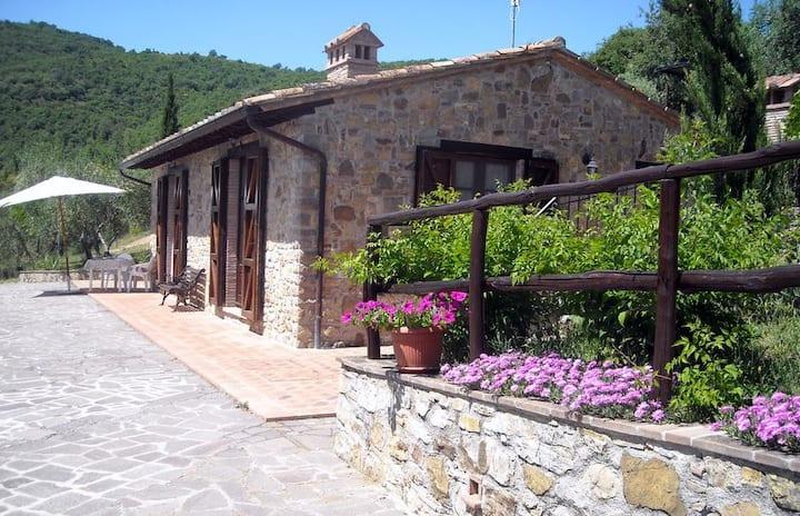 Casa in pietra immersa tra olivi e tranquillità