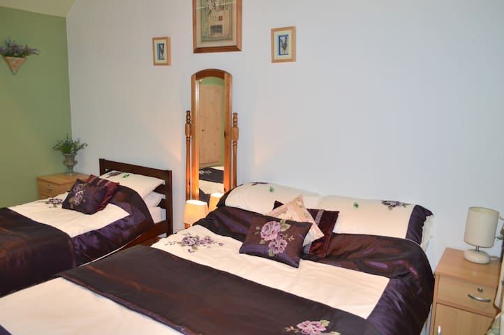 Green&Yellow Family Friendly Rooms - Ballymore Eustace - Aamiaismajoitus