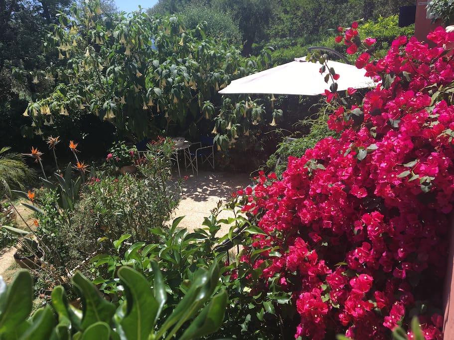Sole e mare piani d 39 invrea 2 camere giardino priv for Piani architettonici di cottage
