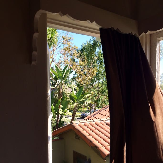 Breeze and view of palmtrees from the bedroom