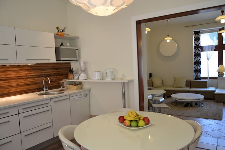 Flat under the castle in the old city center - Ljubljana - Appartement