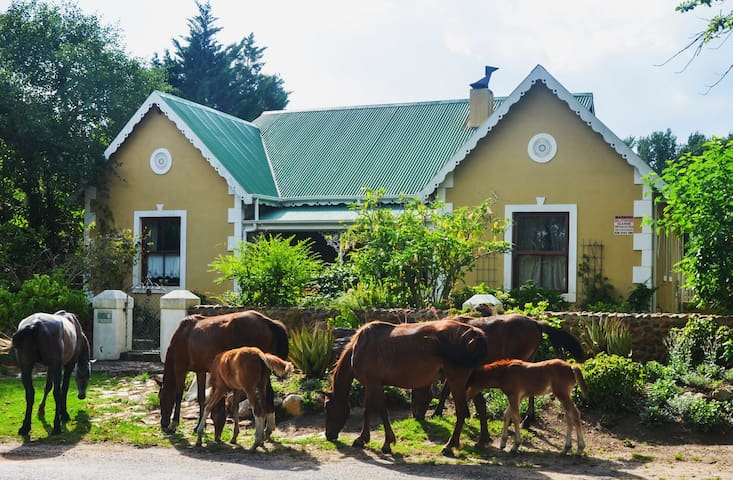 Hikers, Bikers and Bath-Tub Fans! - Greyton - Bungalow