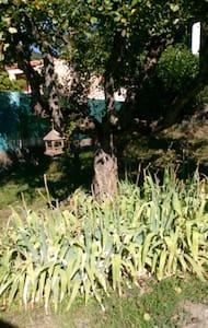 Appt de 63 m2 en rez de jardin qui fait 200 m2. - Digne-les-Bains - Lägenhet