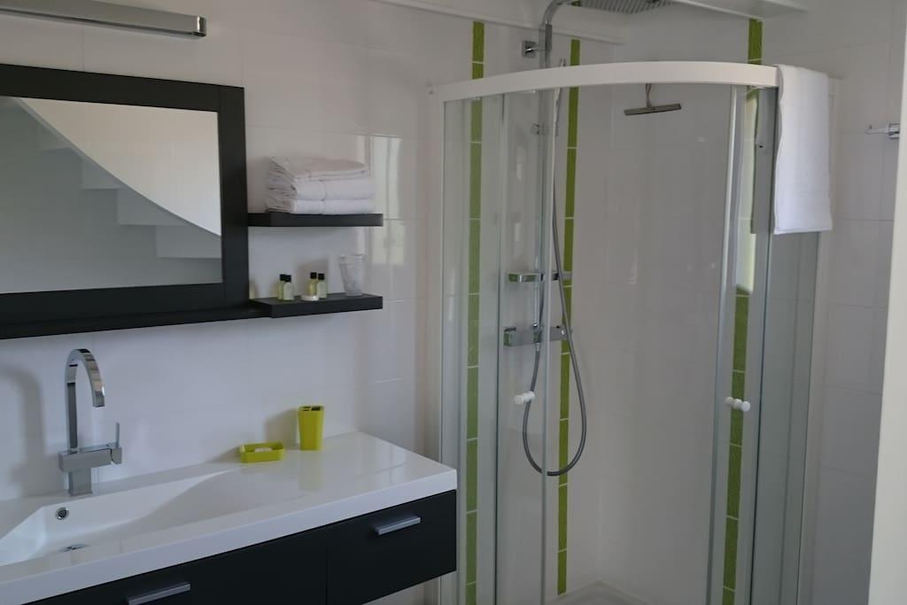 Salle d'eau - douche, meuble vasque, wc, lave-linge séchant